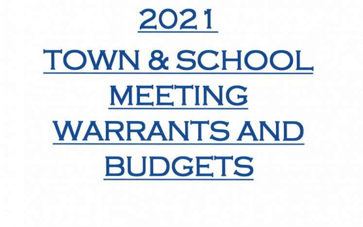 town and school meeting warrants and budgets